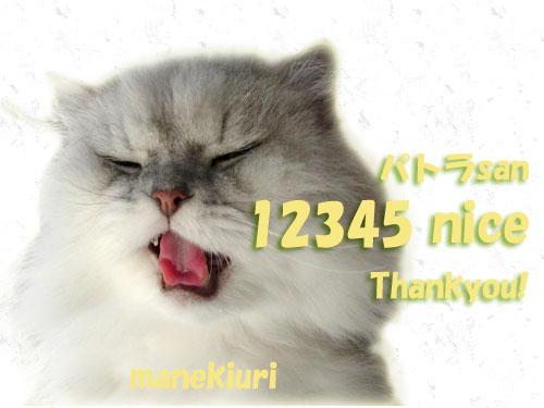 12345manekiurisan20090929.jpg