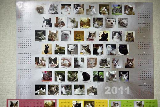 20101007-2.jpg