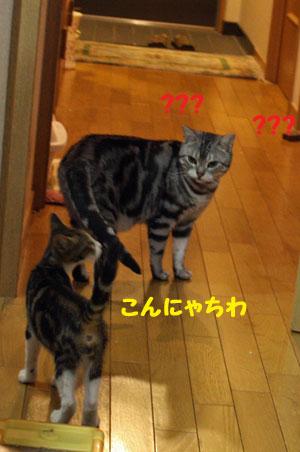 20120811-2.jpg