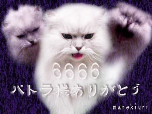 manekiuri-6666.jpg