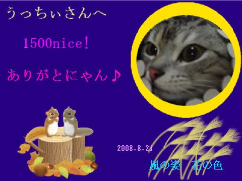 to ucchii1500.jpg