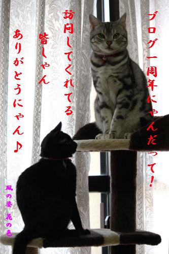 20090404-1.jpg