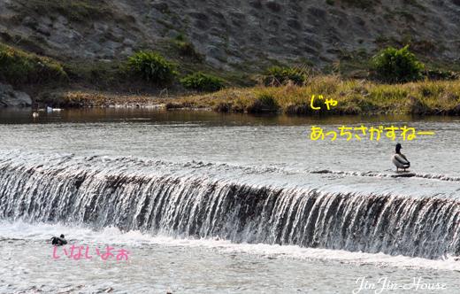20110404-8.jpg