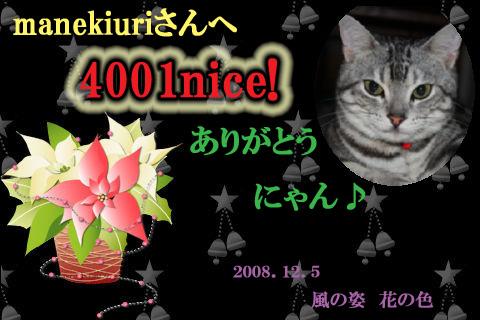 4001nice to manekiuri.jpg