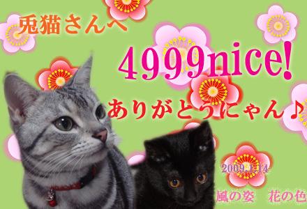 4999usaginekosan.jpg