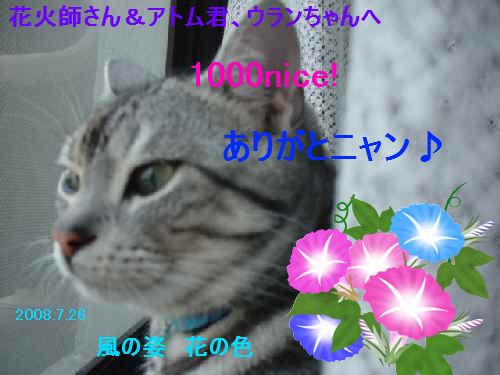 to mr.hanabishi.jpg